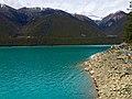Gongbo'gyamda, Nyingchi, Tibet, China - panoramio (48).jpg