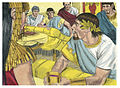 Gospel of Mark Chapter 6-6 (Bible Illustrations by Sweet Media).jpg