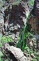 Grand Canyon 00640 n 7ab88k78v219 (2540128041).jpg
