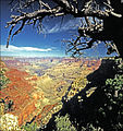 Grand Canyon National Park—The View from Yaki Point.jpg