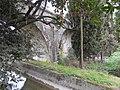 Grasse Vestige Central-Var7.JPG