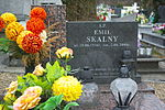 Grave of Emil Skalny at Posada Cemetery in Sanok 2.jpg