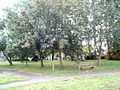 Green space at Woodside - geograph.org.uk - 577080.jpg