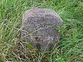 Grenzstein B75 P8300015.JPG