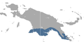 Grey Dorcopsis area.png