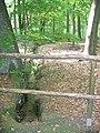 Guteborn, der Kühle Born vom Schlossteich aufwärts, Spätfrühling, 03.jpg