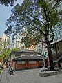 HK 北角 North Point 油街實現 Oil Street Art Space front garden tree Mar-2014.JPG