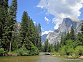 Half Dome over the Merced.jpg
