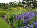 Harlow Carr Gardens - panoramio - PJMarriott (2).jpg
