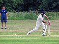 Hatfield Heath CC v. Takeley CC on Hatfield Heath village green, Essex, England 03.jpg