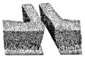 Hedge (PSF).png