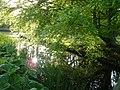 Heiloo 18-5-2010 - panoramio (178).jpg
