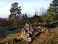 Henriksborgs ruin, den 18 december 2008, bild 4.JPG