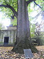 Henry Clay's grave in Lexington - DSC09040.JPG