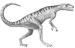 Chasse aux dinosaures ! 250px-Herrerasaurus