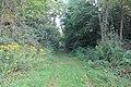 Hewen's Creek Park, 6515 Bemis Road, Ypsilanti Township, Michigan - panoramio (1).jpg