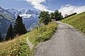 Hiking trail at Mürren, Bern, Switzerland, 2012 August.jpg