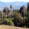 Hillside Memorial Park, Redlands, CA 3-2012 (6979583835).jpg