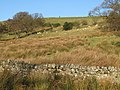 Hillside pastures near Struthers - geograph.org.uk - 638235.jpg