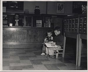 Hosmer Library - Boys using the library.