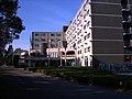 Hotel De Brug Mierlo - panoramio.jpg