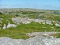 Houses at Fleòideabadgh - geograph.org.uk - 1390758.jpg