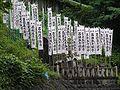 Hyakken-taki-hudoson,百間滝不動尊の幟-P8161927.jpg