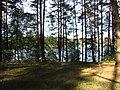 Ignalina, Lithuania - panoramio (11).jpg