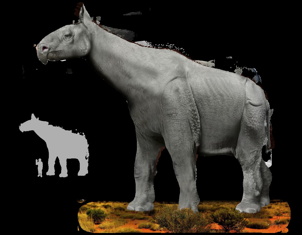 Resultado de imagen de indricotherium