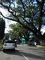 Infanta,Pangasinanjf0215 33.JPG