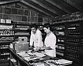 Interior view of an unspecified Army pharmacy.jpg