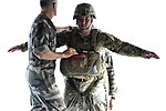 International partners participate in a D-Day anniversary operation 170606-F-ML224-0342.jpg