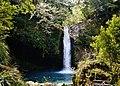 Izu Joren-Wasserfall 09.jpg