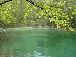 Kamnik Bistrica