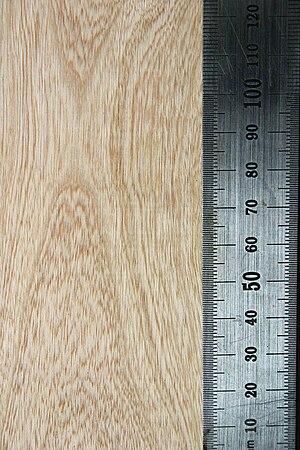 Jacaranda mimosifolia - Wood