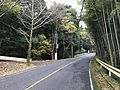 Japan National Route 500 in Ochiai, Soeda, Tagawa, Fukuoka 3.jpg
