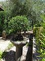 Jardín Botánico El Castillejo MIN-DSC09505.JPG
