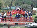 Jardín Japonés 1060344.JPG