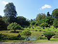 Jardin botanique de Kandy-Sri Lanka (2).jpg