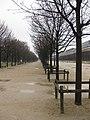 Jardin des Tuileries IMG 1838.JPG