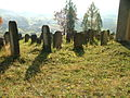 Jewish cemetery in Bobowa21.jpg