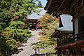 Jingoji Kyoto Kyoto23n4592.jpg