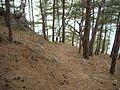 KIRKMERDİVEN GİDİŞ - panoramio.jpg