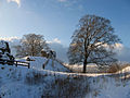 Kendal Castle entrance - geograph.org.uk - 1630178.jpg