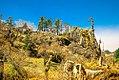 Khaptad National Park1.jpg