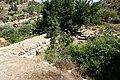 Khirbet-al-Lawza-467.jpg