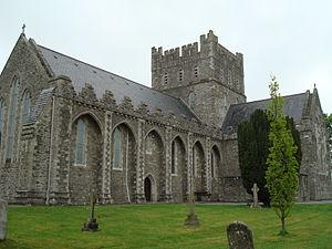 Bishop of Kildare - St. Brigid's Cathedral, Kildare
