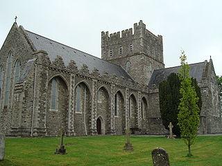 Kildare Cathedral Church in Kildare, Ireland