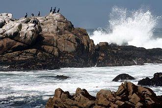 King Range Wilderness - California Coastal National Monument