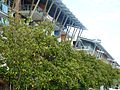King St Wharf ll - panoramio.jpg